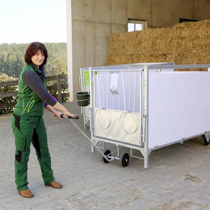 Single calf box